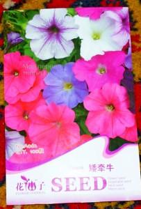 Вот он, китайский пакетик с семенами петунии!