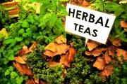 Растения для чая.