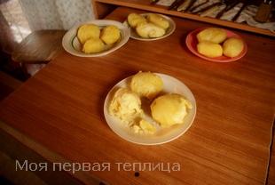 Это уже очищенный от кожуры картофель. Какой для себя выберете?