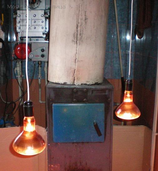 Бак с горячей водой и две красные лампы. Так цыплята будут жить примерно 10 дней.