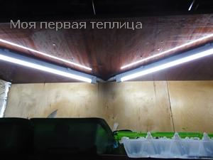 Подсветка для рассады своими руками фото